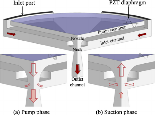The-configuration-of-the-blower-and-the-flow-schematic-in-a-the-pumping-phase-and-b